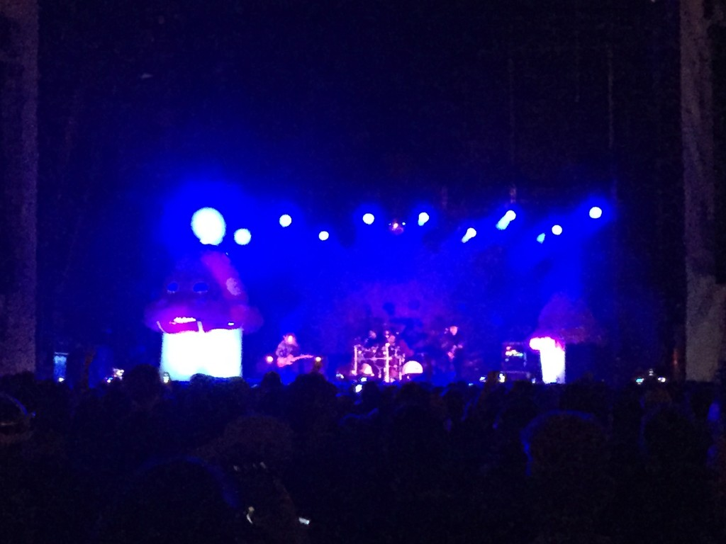 primus mushroom background at a live concert in philadelphia